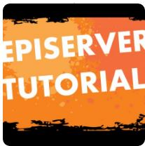Episerver 6 - Creating Custom Profile Properties Via the Admin