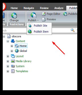 Sitecore_adding_controls_2